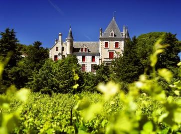 Assurance des domaines viticoles